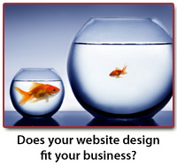 Web Designer in Havertown